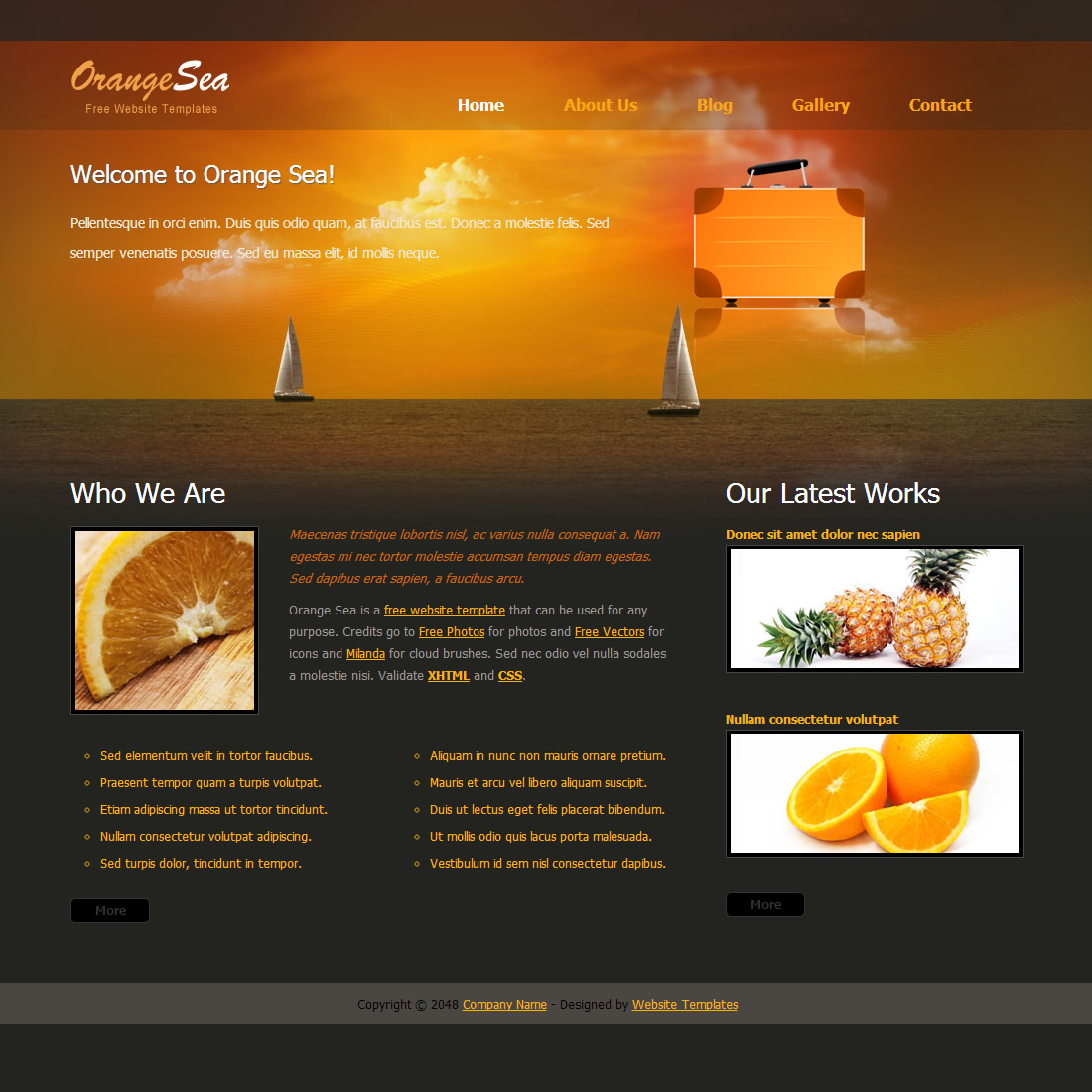 Orange Sea HTML Template