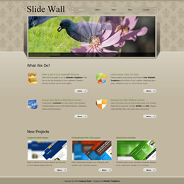 Slide Wall template