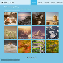 Multi Color Gallery template
