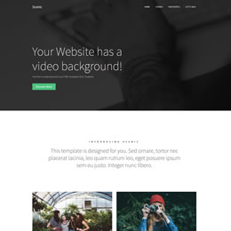 scenic template - Free Html Website Templates